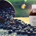 Blueberry Elixir | Visual acuity dietary supplement